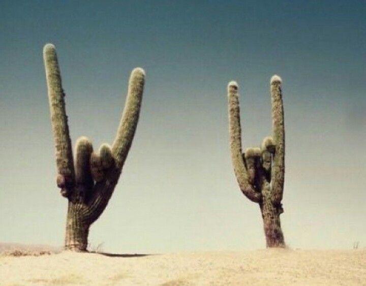Rock on