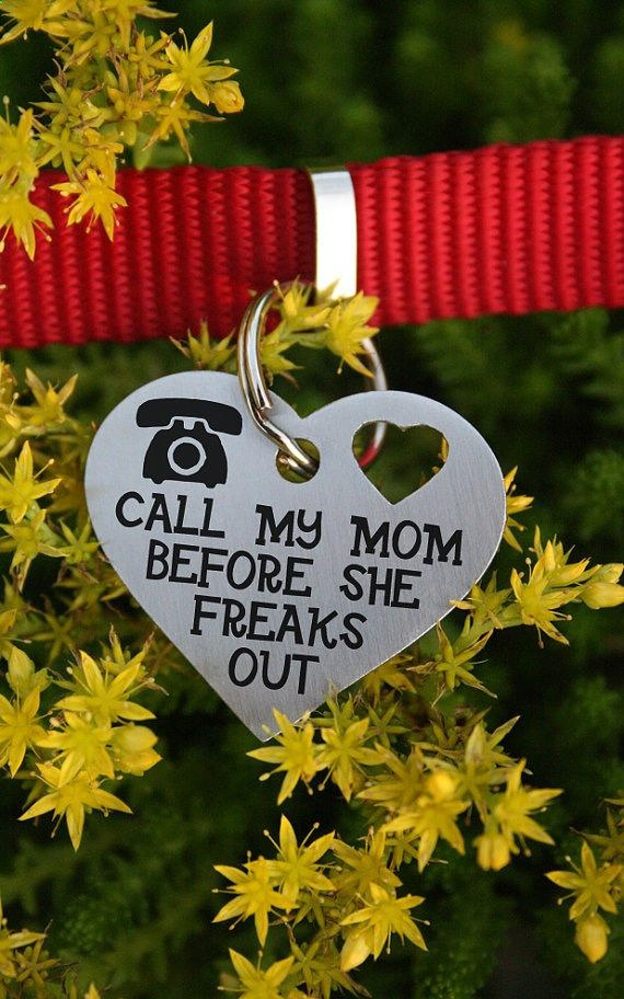 Dog Tags - dos caras personalizados corazón perro etiqueta por BaublesDog