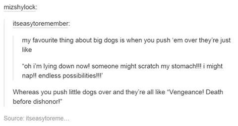 Dogs..so accurate