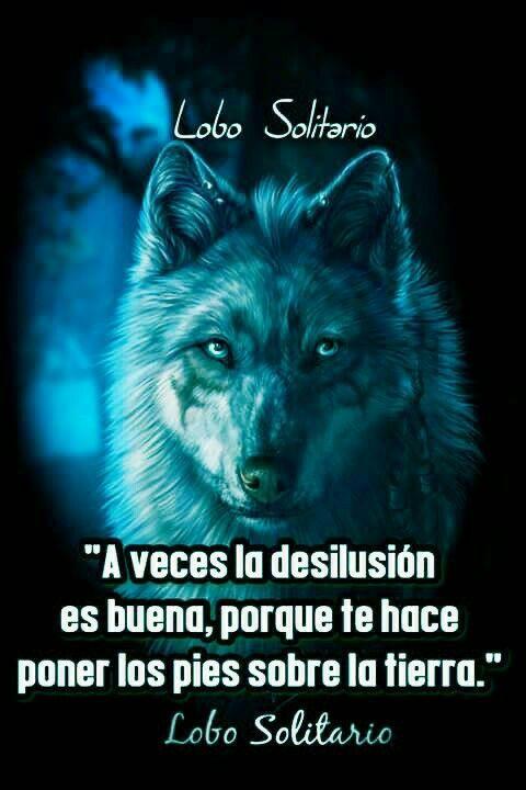 Resultado De Imagen Para Lobo Frases Silla Pinterest Wolf