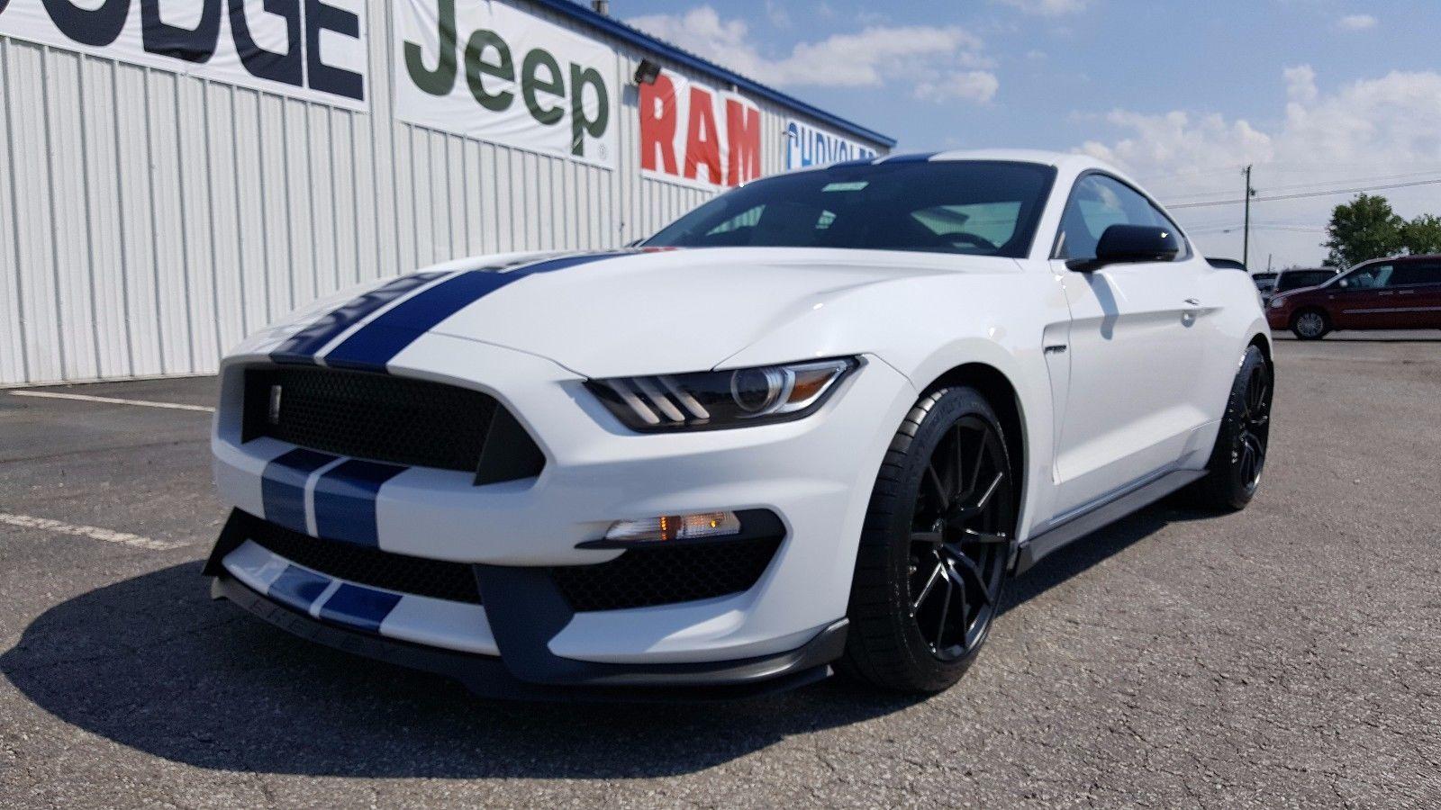 Blue stripe wallpaper ebay - Ebay 2017 Ford Mustang Gt350 New 2017 Mustang Shelby Gt350 White Blue Racing Stripes