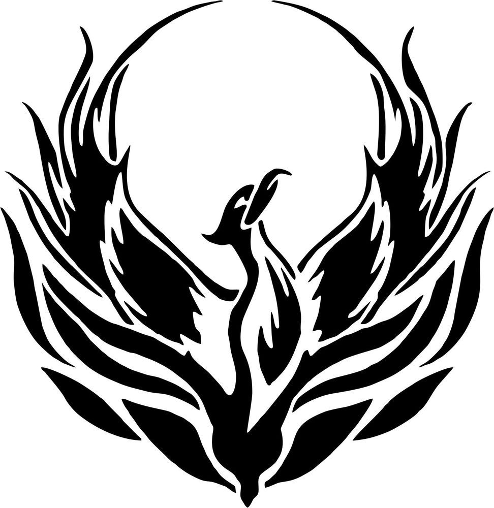 Phoenix sticker car window bumper scooter sticker decal ebay phoenix bird bird pictures