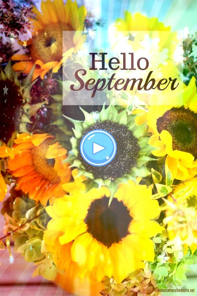 #ゥhomeiswheretheboatisnet #helloseptember #sunflowers #september #hello #porch #and #the #onHello September and Sunflowers on the Porch Hello September | © Hello September and Sunflowers on the Porch Hello September | ©Hello September and Sunflowers on the Porch Hello September | © Hello September and Sunflowers on the Porch Hello September | ©