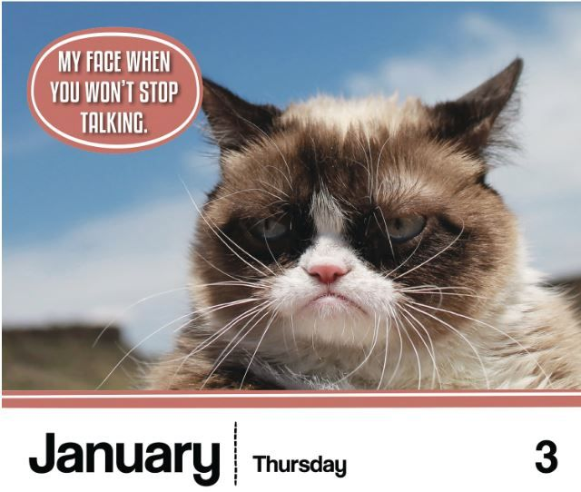Christmas In July Cat Meme.Grumpy Cat Calendar Gifts For Cat Lovers Cat Christmas