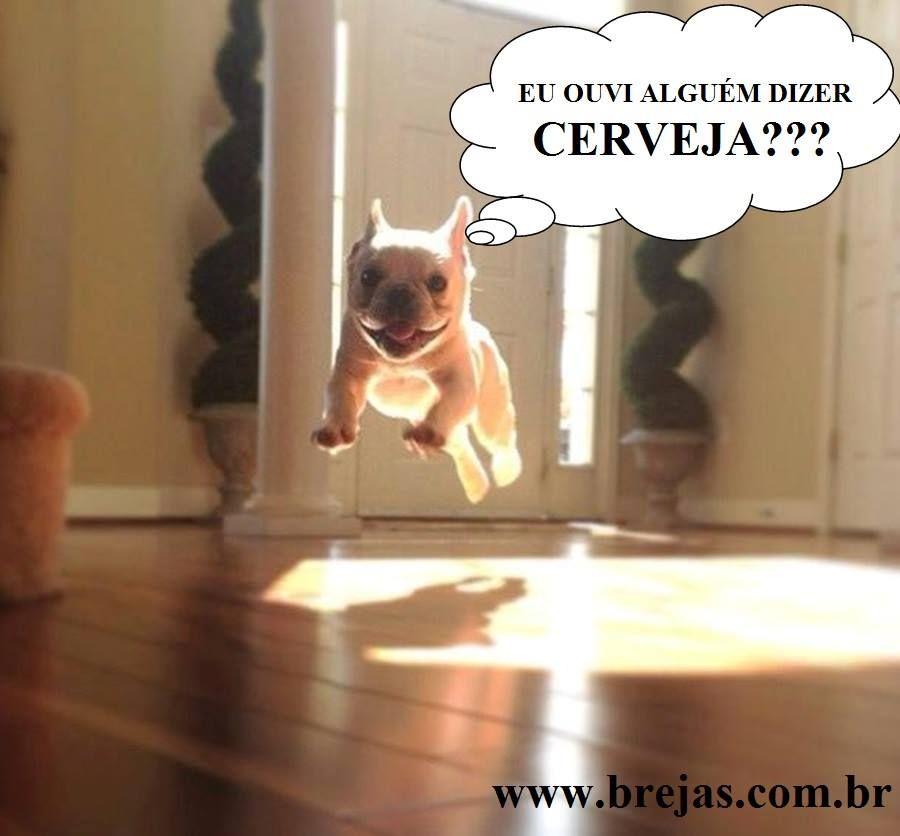 20 Melhores Memes De Cerveja Humor De Cerveja Frases Engracadas Sobre Cerveja Fotos Com Frases Engracadas