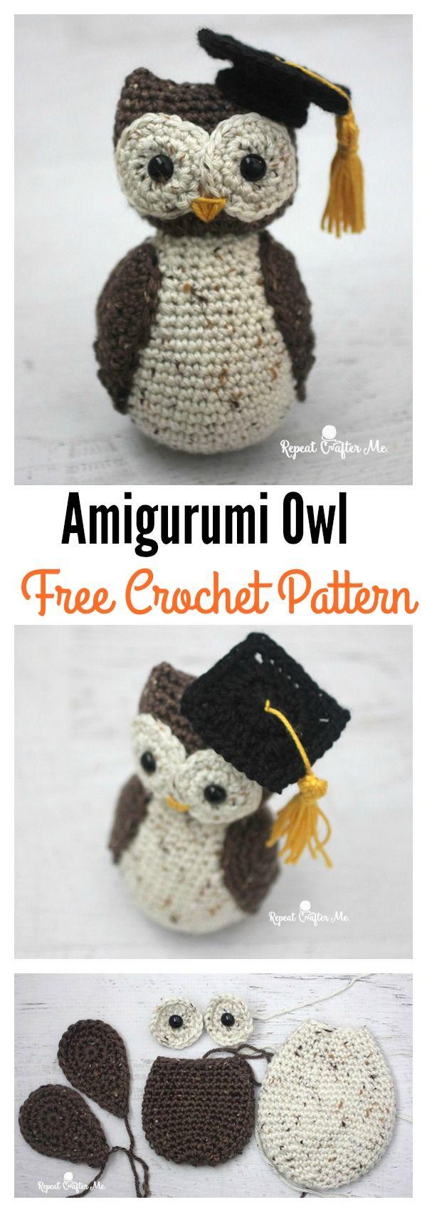 Adorable Crochet Amigurumi Graduation Owl Free Pattern | Pinterest ...