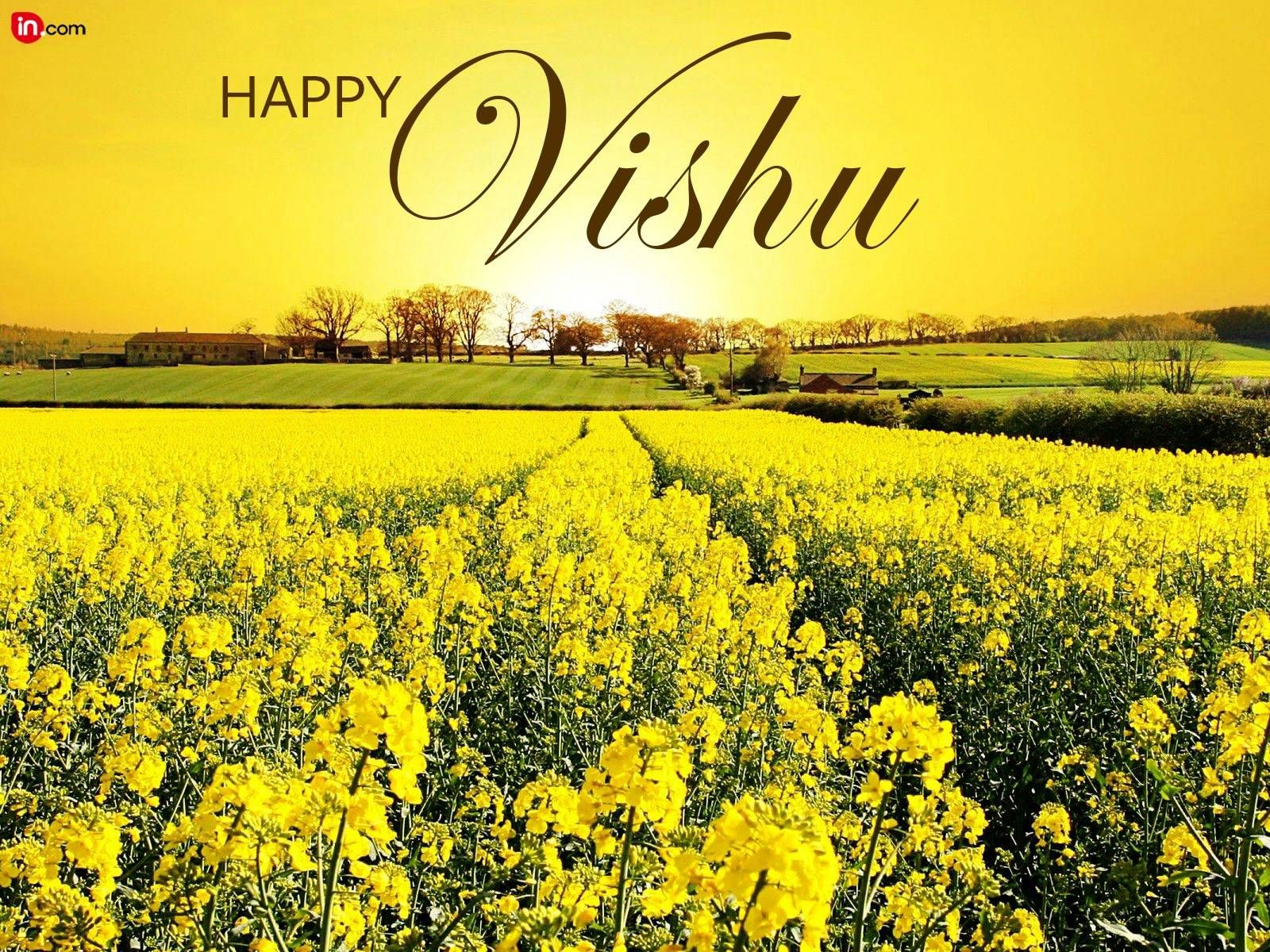Happy Vishu Images Download Vishu Hd Photos 2016 Happy Vishu