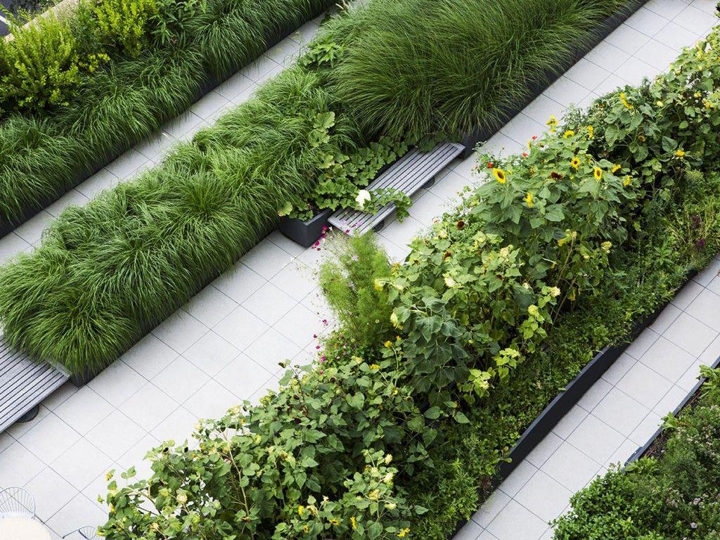 Dirtworks landscape architecture simons center for for Geometric garden designs