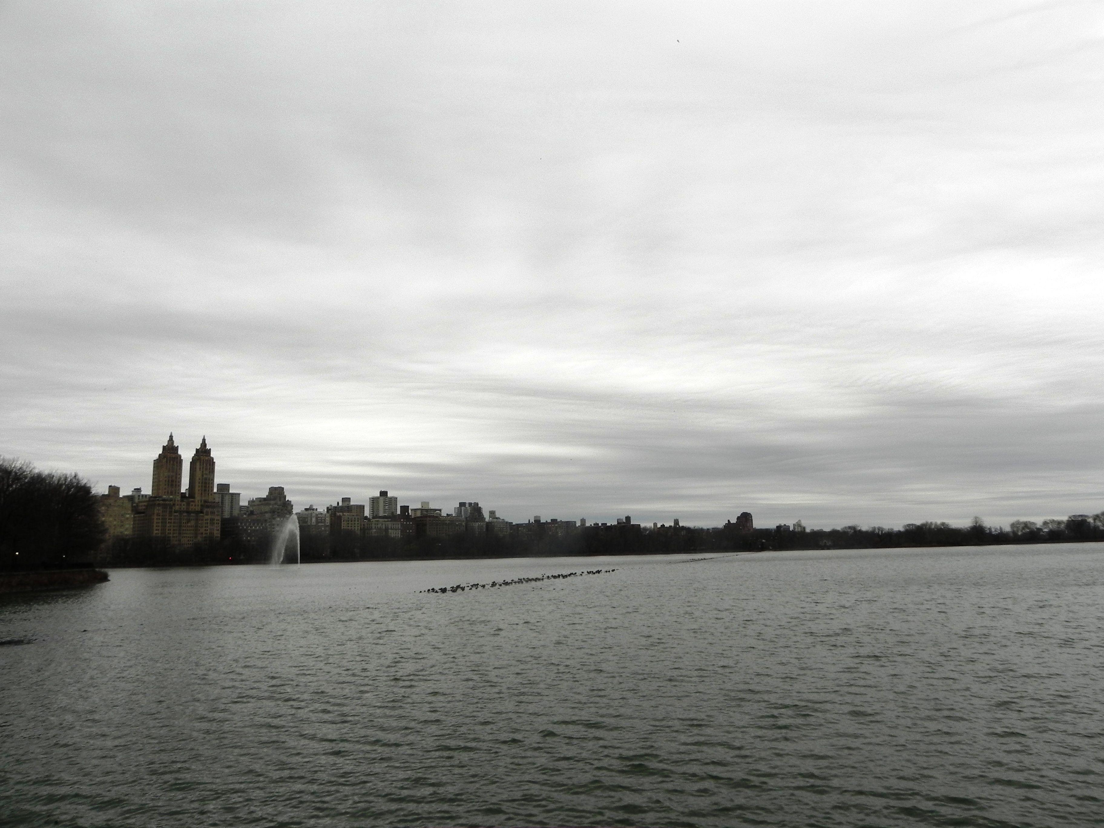 Central Park #newyork #christmas