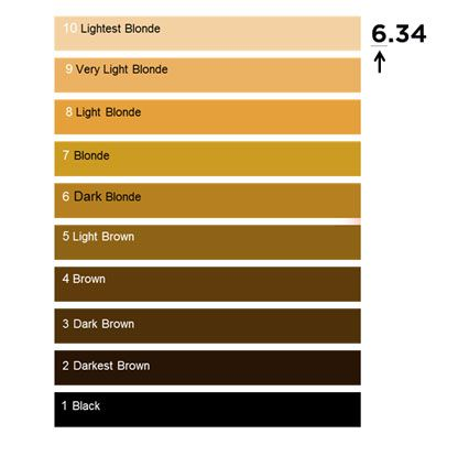 Chart To Show L Oreal Professionnel International Base Hair Colour