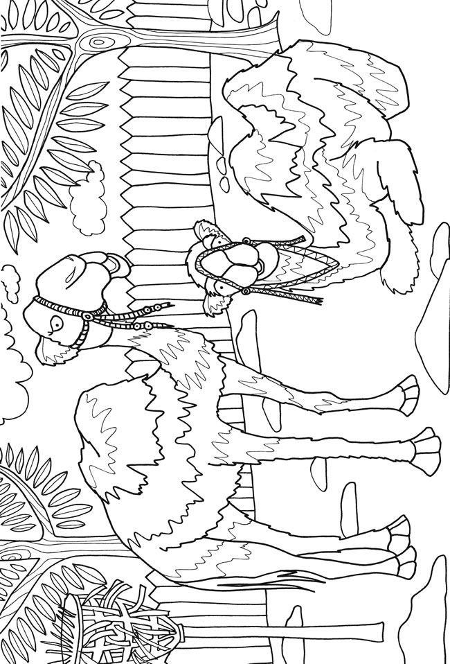 Dover Sampler - Day at the Zoo Adventure Coloring Book | Colouring ...