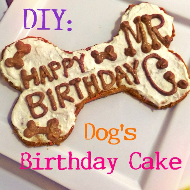 How to Throw a Dog Birthday Party Doggies Pup and Birthday cakes
