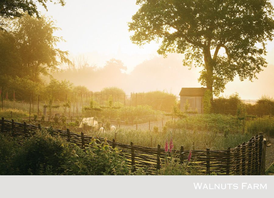 Walnuts Farm – the rustic shoot location house | Vegetable Garden