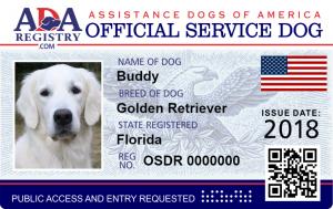 Service Dog Dog Service Dogs Dogs Service Dog Registration