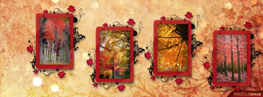 17 Best images about Facebook Covers~Falling for Autumn on ...