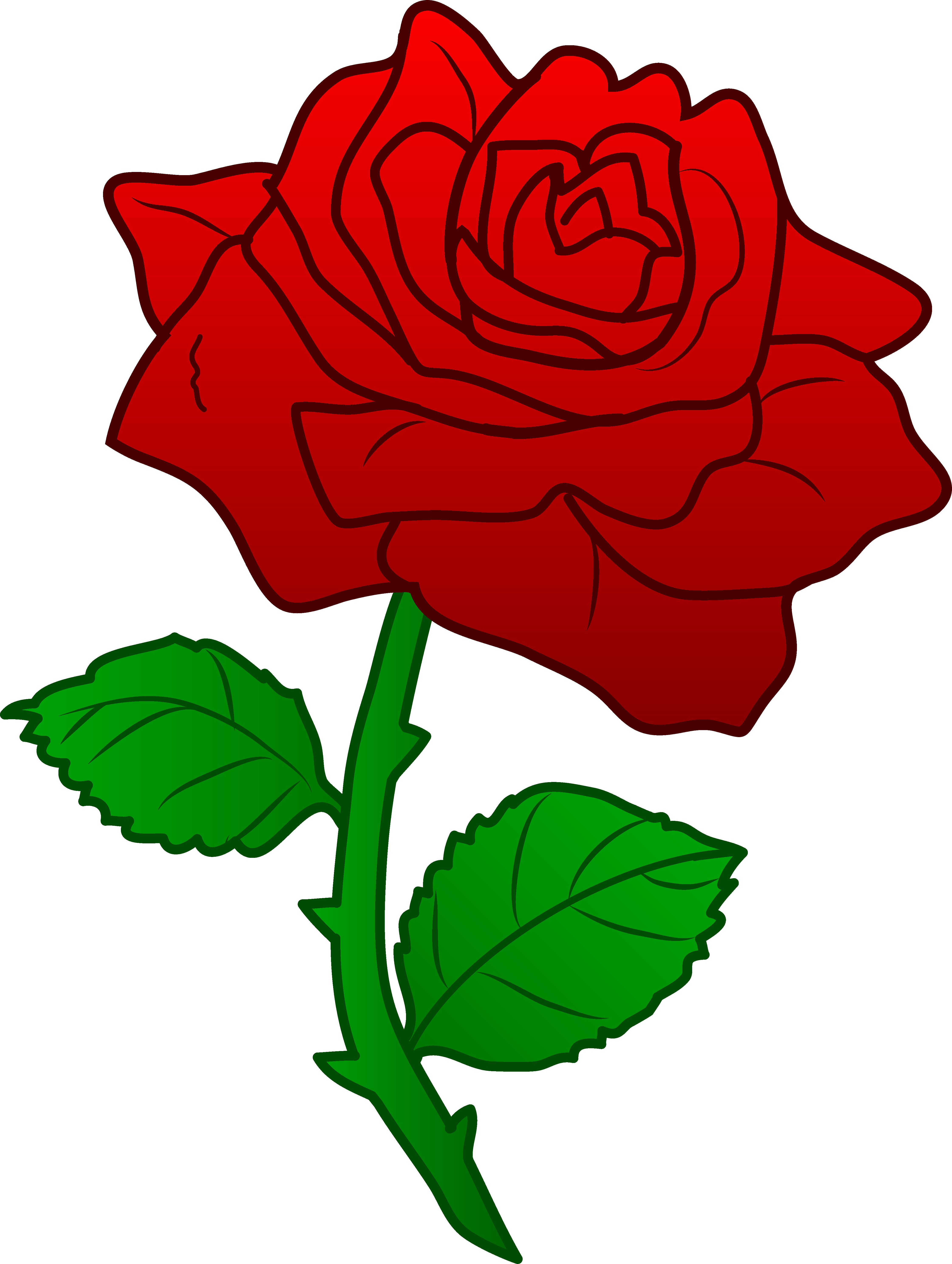 Large Red Roses Png Clipart With Images Red Roses Single Red Rose Rose Clipart