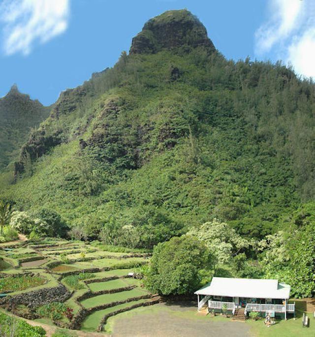 Limahuli Garden And Preserve Kauai Hawaii