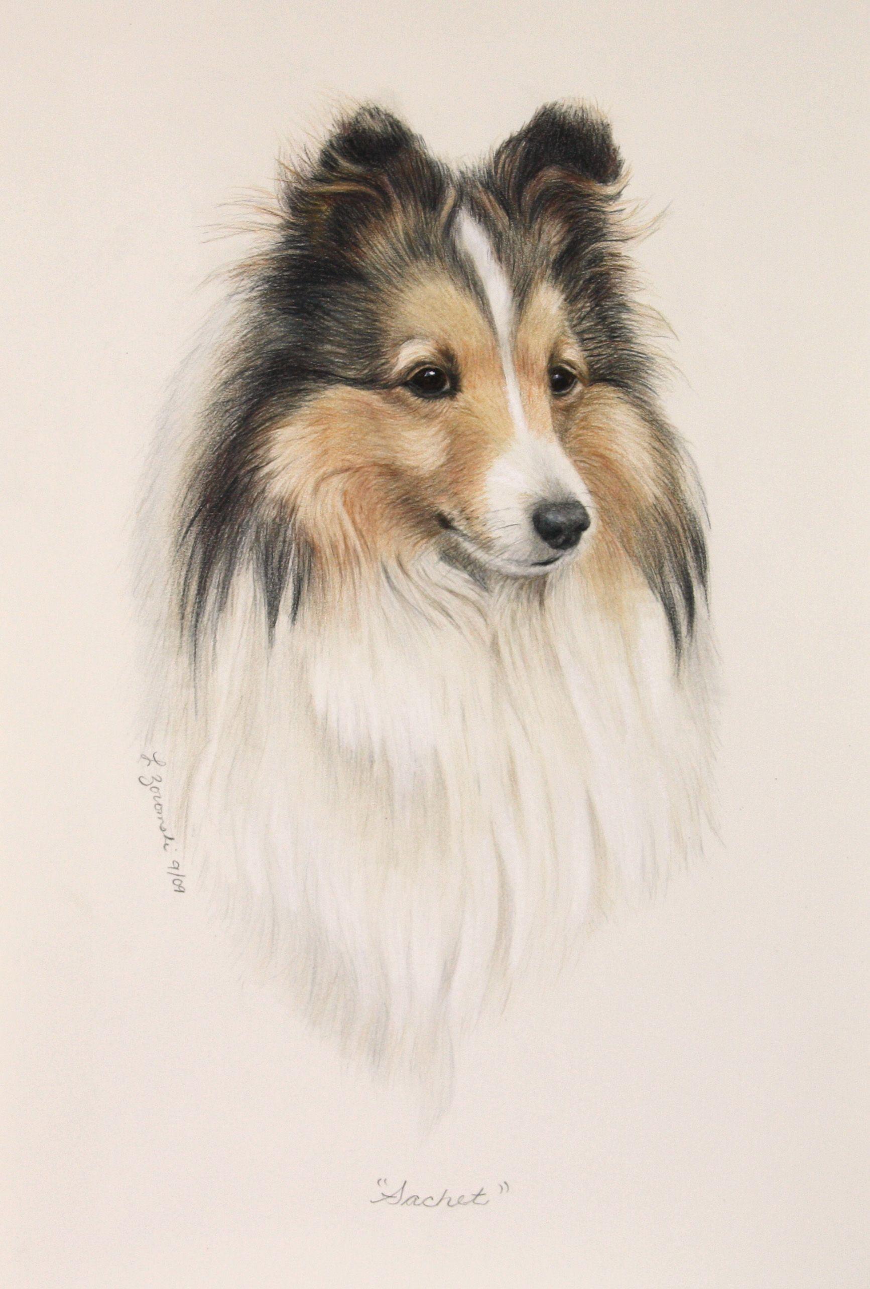 Art by Lesley Zoromski color pencil/water color paint ...
