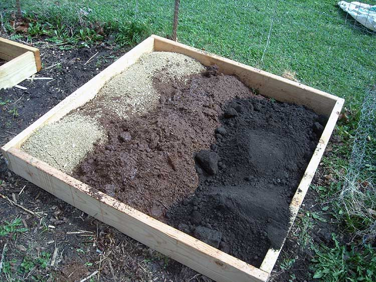 Peat Moss What It Is and How To Use It In Your Garden