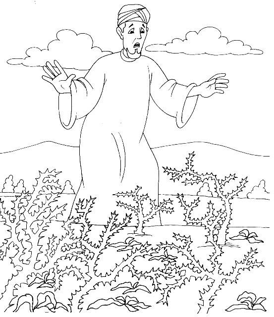 Thorns Choked Out Some Of The Sower S Plants Bible Coloring
