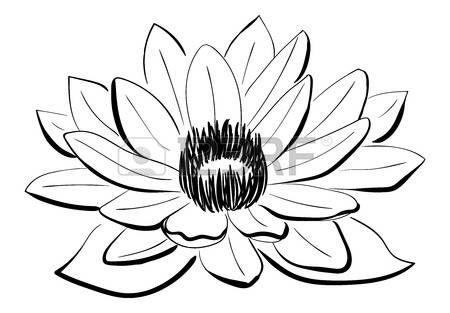 Fleurs Stylisées Vecteur Noir Et Blanc Fleur De Lotus