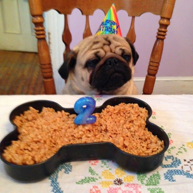 Retro Rover: Rice Krispy Birthday Cake for Dogs