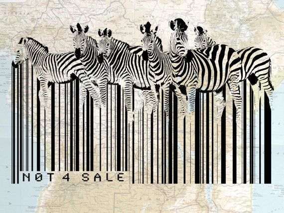 Vintage Map Original Art Illustration Art, Graphic Design Print: African Zebra Barcode 8X10