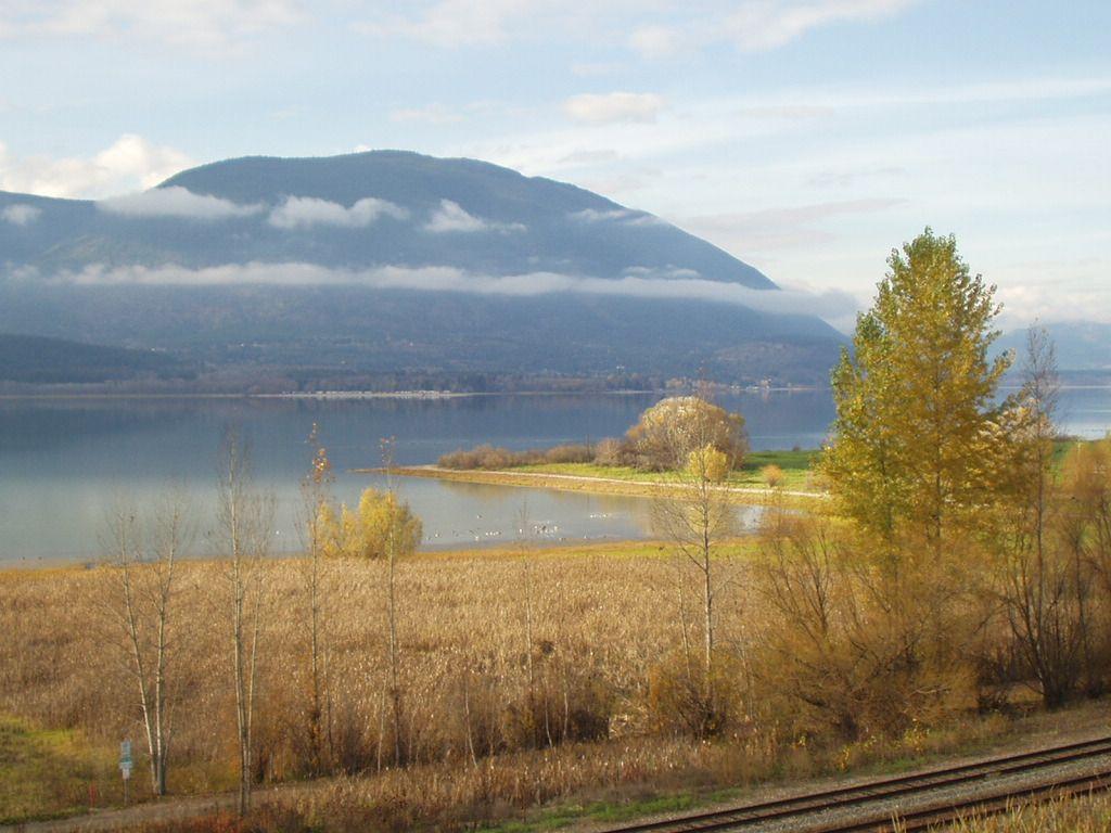 Fall in Salmon Arm, British Columbia