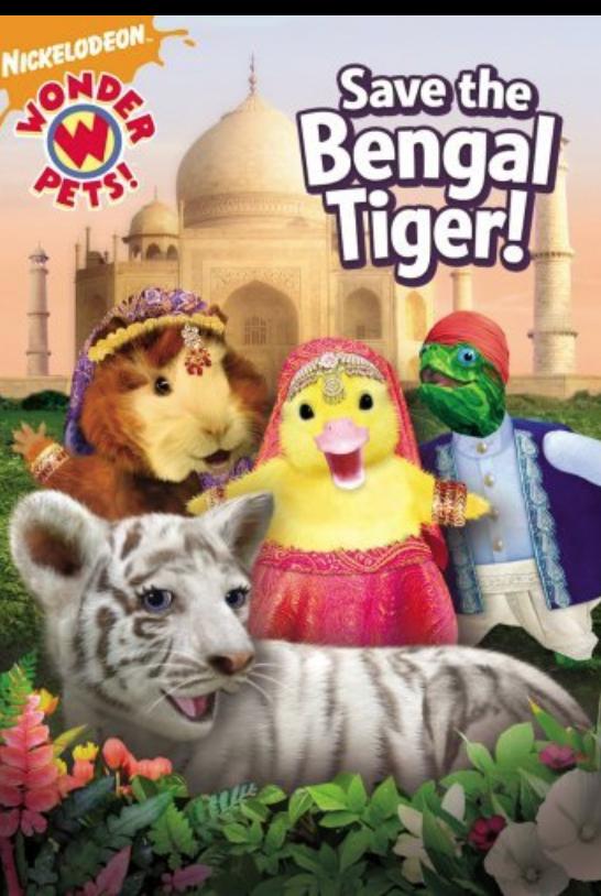 Shawn Mendes Credited On Wonder Pets Series Wonder Pets Pet Tiger Bengal Tiger