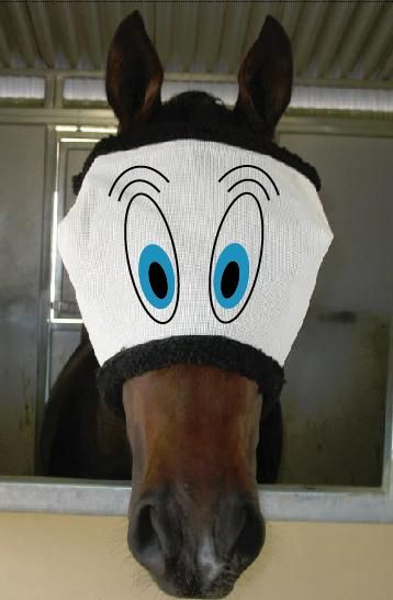 Funny Fly Mask