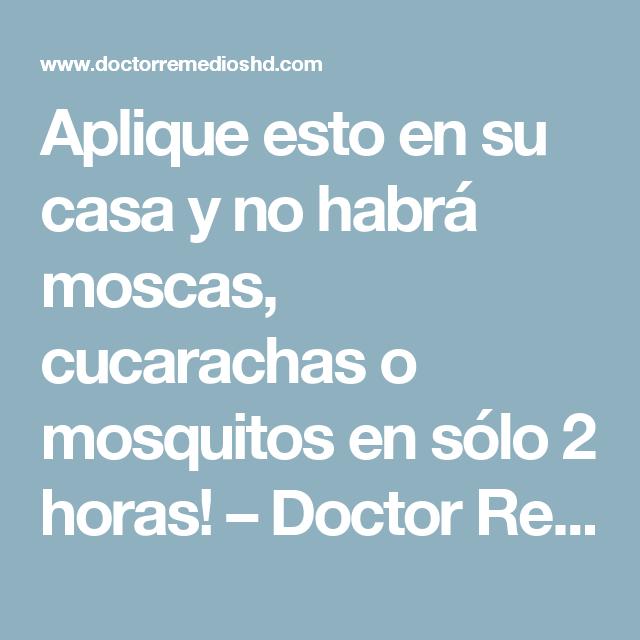 Aplique esto en su casa y no habrá moscas, cucarachas o mosquitos en sólo 2 horas! – Doctor Remedios