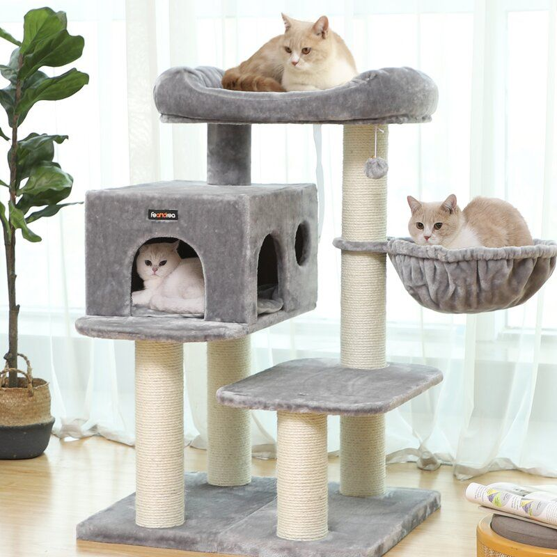 44 Hashimoto Cat Tree I 2020 Kattrad