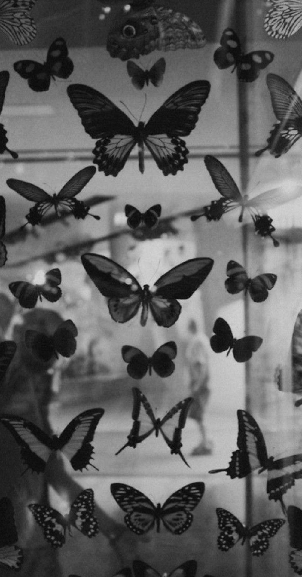 Pinterest Elana Black Aesthetic Wallpaper Black And White Picture Wall Black Aesthetic