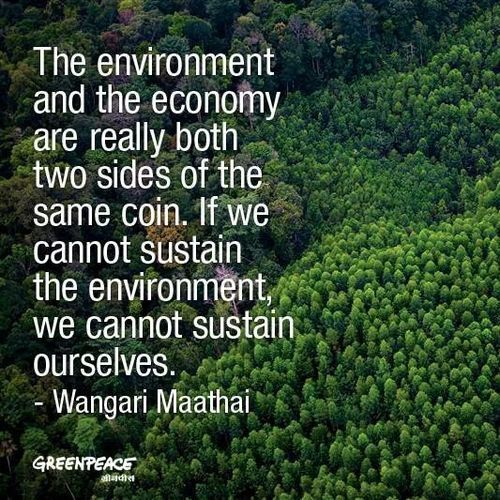 Environment Quotes Awesome Environment Quote Gardening 48 In 48 Pinterest Environment