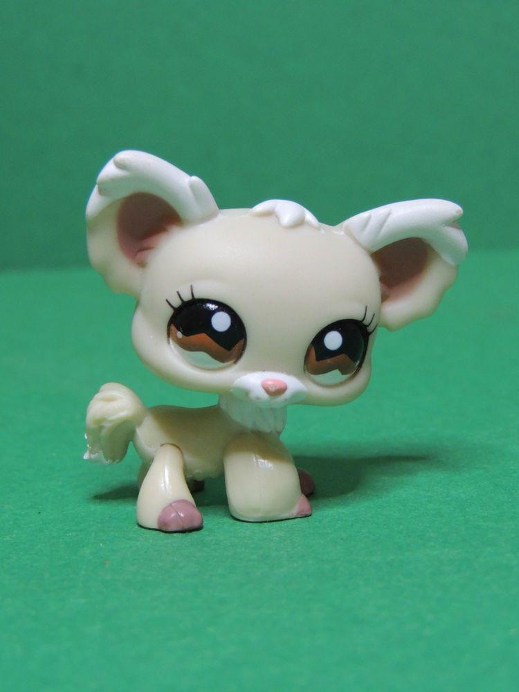 Pingl par unfoubleu sur lps littlest petshop figurine pet shop figure hasbro lps et chien - Petshop papillon ...