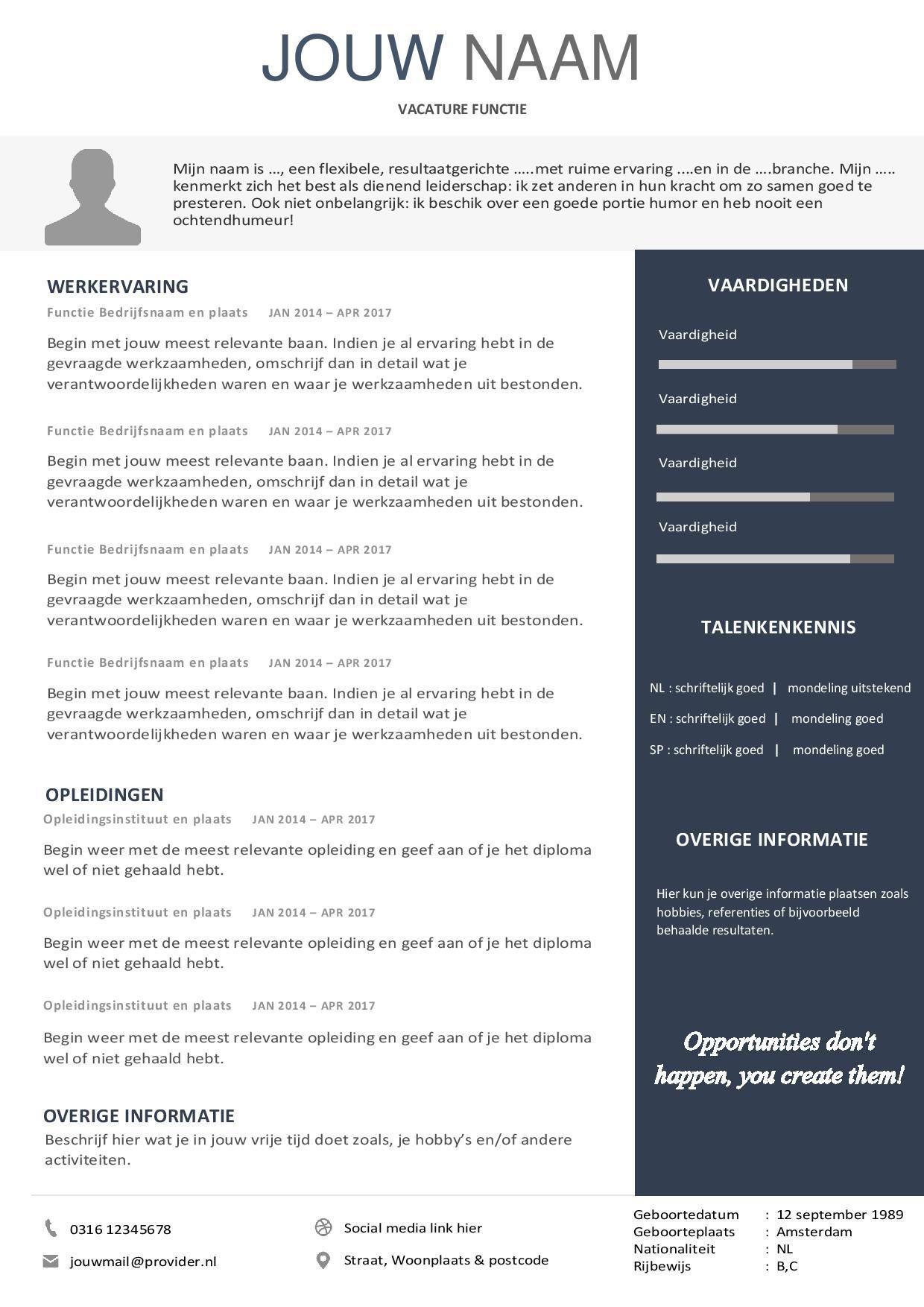 Opvallend CV template Gratis en Premium Download Cv