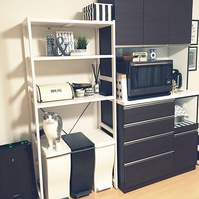 キッチンで使うゴミ箱と置き方 浮かない 目立たない方法 インテリア レンジ台 インテリア 実例