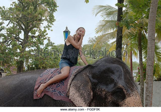 elephants with women fucking sri lanka