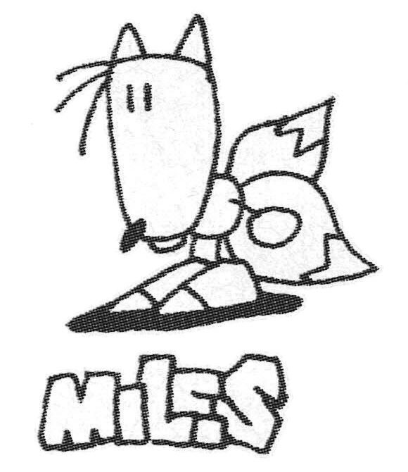 The sketchy renditions of Sonic, Tails and Knuckles from