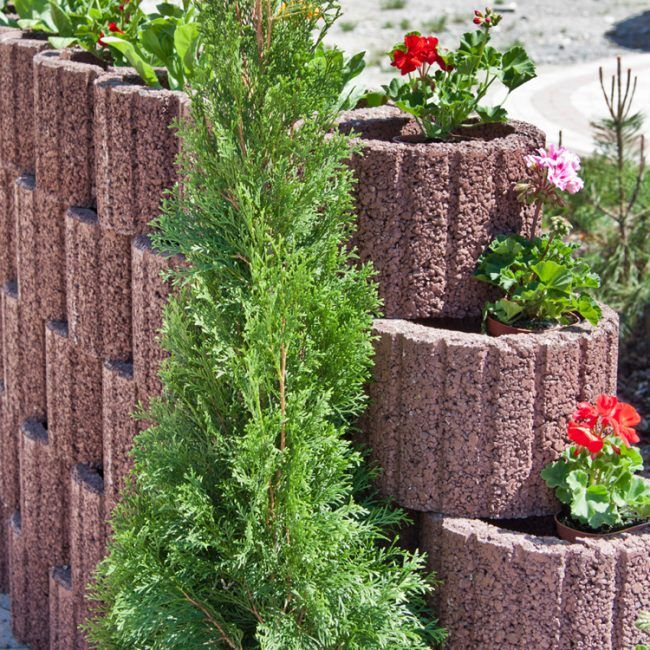 Pflanzringe Beton pflanzringe beton setzen gartengestaltung ziegelrot blumen