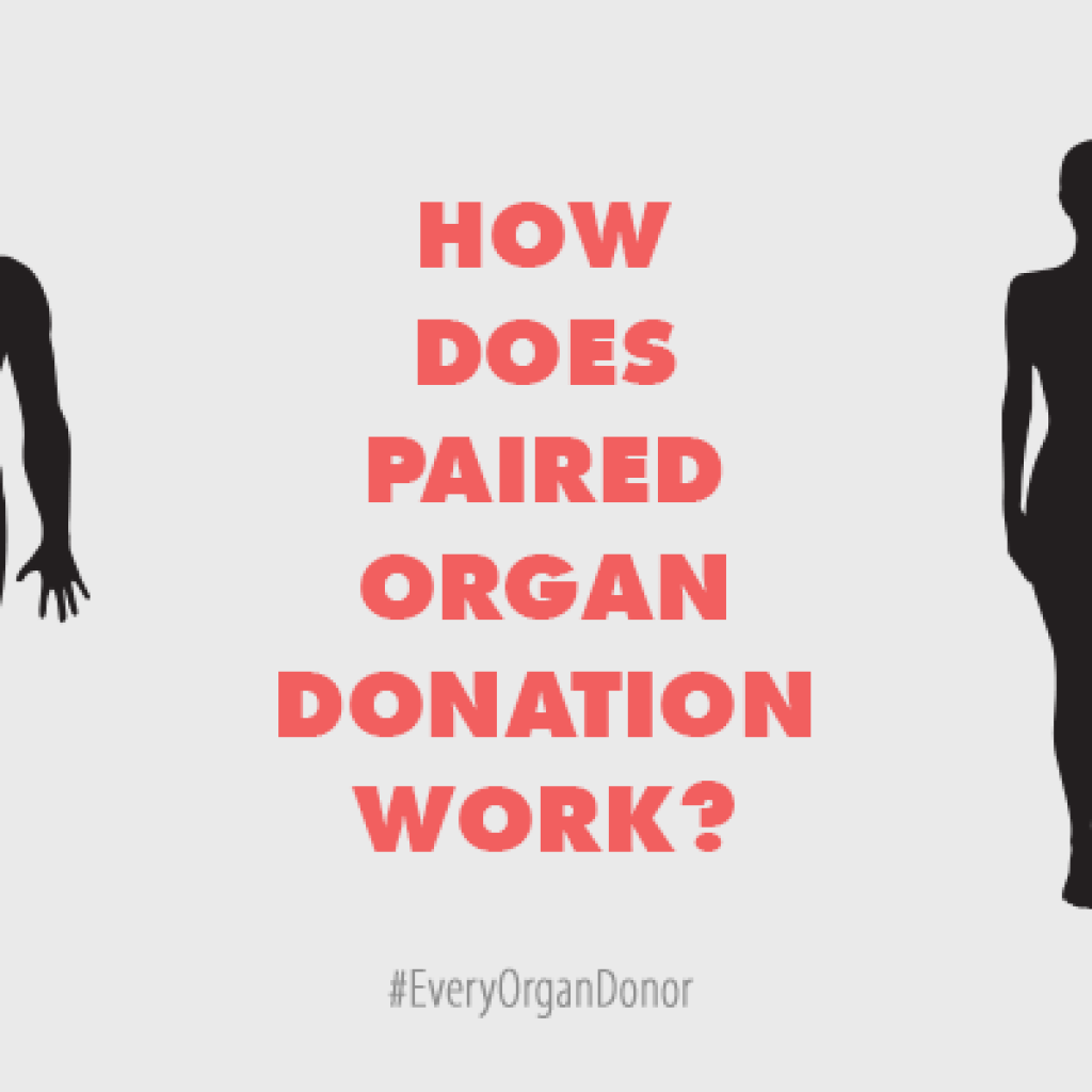 Example Of Leadership Essay The Organ Procurement And Transplant Network That Is Operated By The United  Network For Organ Sharing Scholarships Writing Essays also How To Write An Essay High School The Organ Procurement And Transplant Network That Is Operated By The  Essay With Citations