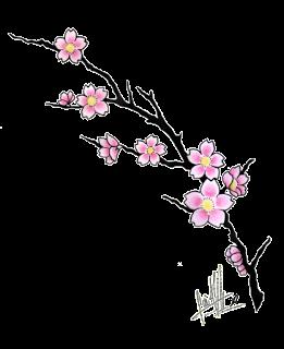 Japanese Cherry Blossom Tattoos Cherry Flower Tattoos Images Cherry Blossom Tattoos Design Pictu Cherry Blossom Drawing Flower Drawing Flower Drawing Design