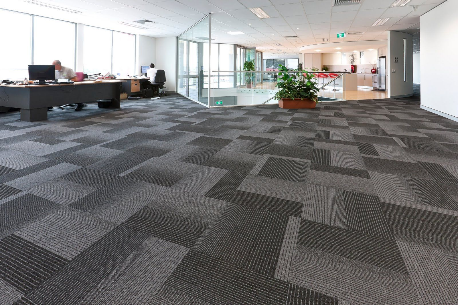 Modern Carpet Floor