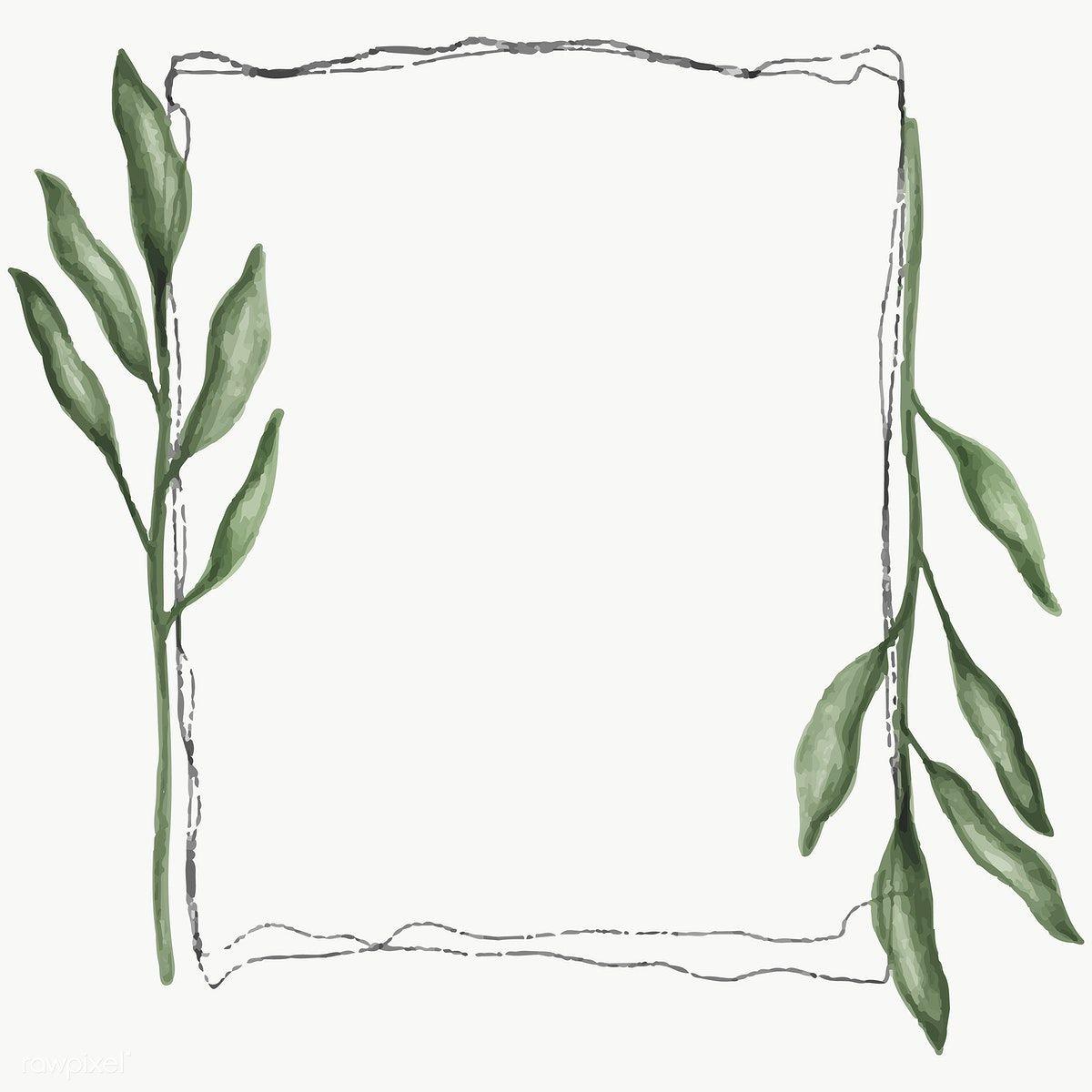 Rectangle Floral Frame Transparent Png Premium Image By Rawpixel Com Noon Png Element Decoration Illustration Design Artwork Plants Botanical Kartu