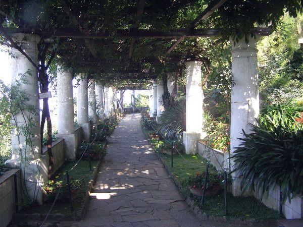 Axel Munthe Garden In The Villa San Michele Capri Italy