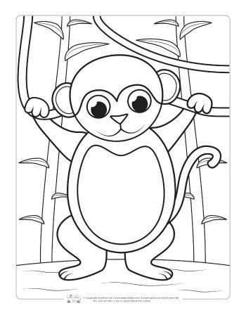 Safari and Jungle Animals Coloring Pages for Kids | KBN ...
