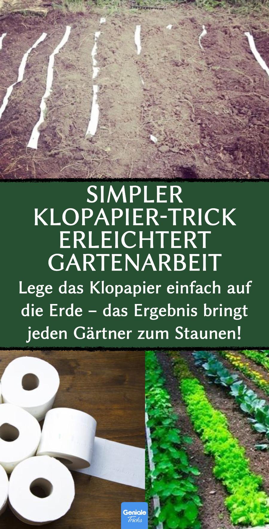 Simpler Klopapier-Trick erleichtert Gartenarbeit