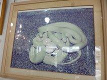 3a77cd7462b3e 岩国の 白蛇神社 の画像|デヴィ夫人オフィシャルブログ「デヴィの独り言 独断と偏見」by Ameba