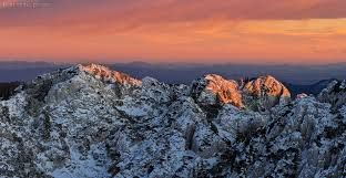Rozanski kukovi on Velebit #travel #visit #croatia #adventurecroatia #nature #love2travel #dream #destinations #places #adventure #park