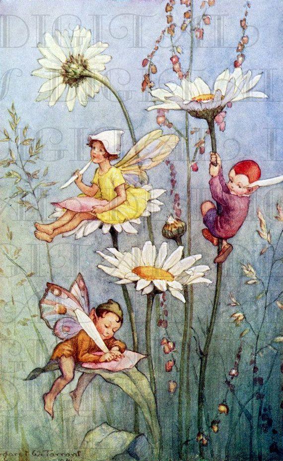 002 Fairy Writing On FLOWERS. Vintage Book Plate Illustration